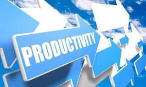 we need business coach for SETTING PRODUCTIVITY SYSTEMS